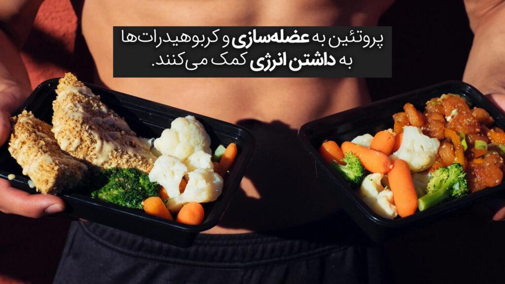 پروتئین به عضلهسازی و کربوهیدراتها به داشتن انرژی کمک میکنند.