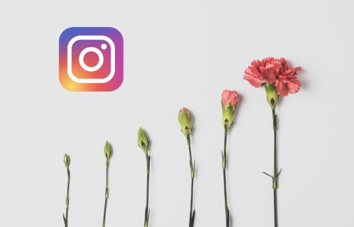 برای رشد پیجمان، چه تعداد پست در اینستاگرام بگذاریم؟