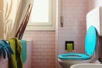 درپوش توالت را قبل از کشیدن فلاش تانک ببندید!