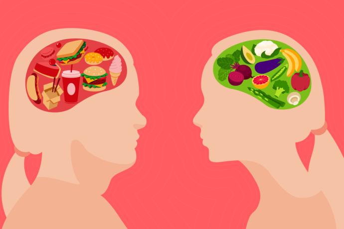 یکی از این راهکارها، توجه کامل به غذاهای تقویتکننده مغز است. برخی غذاها روی نقاط مغزی مربوط به تمرکز، توجه، استدلال و برهان، توانایی تفکر و در کل سلامت مغز تأثیرگذار هستند. با خوردن مرتب این غذاها میتوانید توانایی ذهنیتان را افزایش دهید و به آهستگی روی سلامت و عملکرد مناسب مغز کار کنید.
